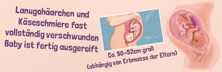 Die 40. Schwangerschaftswoche