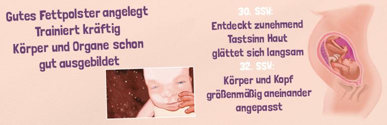 Die 29. bis 34. Schwangerschaftswoche